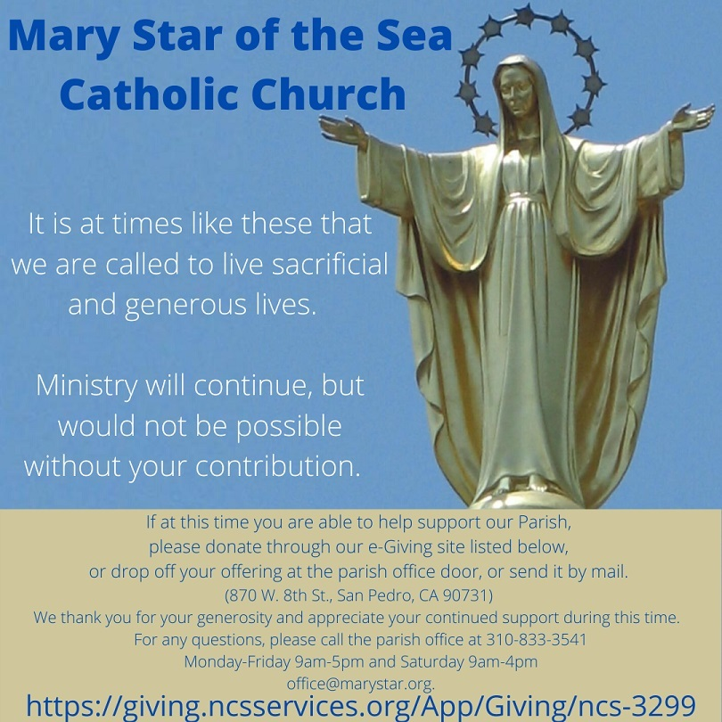 Mary Star Donate